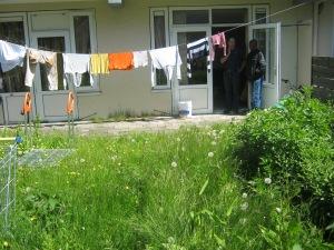 tuin met grasveld voor de makeover