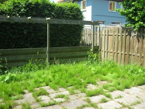 tuin van oudere mevrouw voordat de vrijwilligers aan de slag gingen