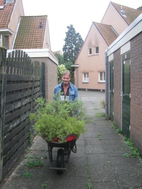 Erik sleept nieuwe planten aan