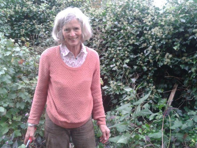 Weer een prachtige plantendonatie voor Sociaal Tuinieren van donateur Nederlandse Tuinenstichting