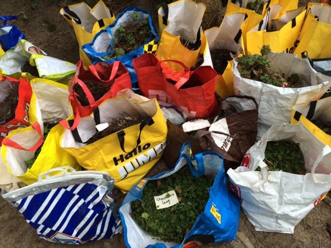 Nieuwe grote plantendonatie voor Sociaal Tuinieren