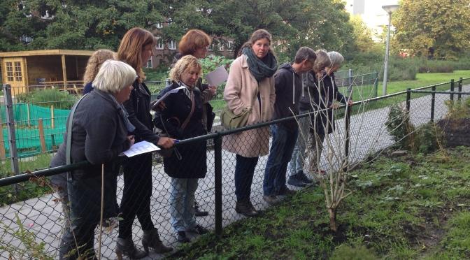 Noodzaak project Sociaal Tuinieren in Reimerswaalbuurt vastgesteld